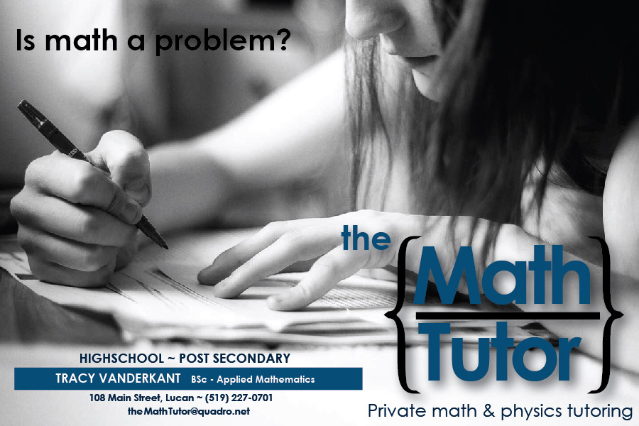 Math Tutor Brent Shea – Math Tutor Description